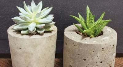 D.I.Y Cement Planters